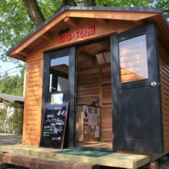 ブルーベリー観光農園にできた、ログキットハウスのかわいいお店(神奈川県 相模原市)